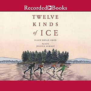 Twelve Kinds of Ice Audiobook