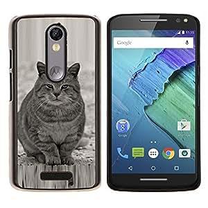 Caucho caso de Shell duro de la cubierta de accesorios de protección BY RAYDREAMMM - Motorola MOTO X3 3rd - Lindo gato gordo Gris Blanco Furry Bestia