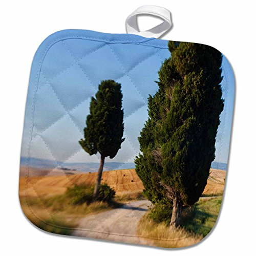 3drose-danita-delimont-italy-winding-road-val-d-orica-tuscany-italy-8x8-potholder-phl-227671-1