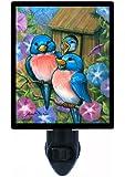 Night Light - Bluebird Welcome - Bluebirds and Bird House