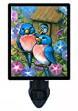 Night Light - Bluebird Welcome - Bluebirds and Bird House