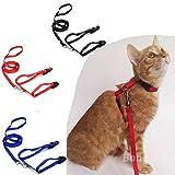 Bazaar Pet Cat Kitten Adjustable Harness Nylon Collar Belt Lead Leash