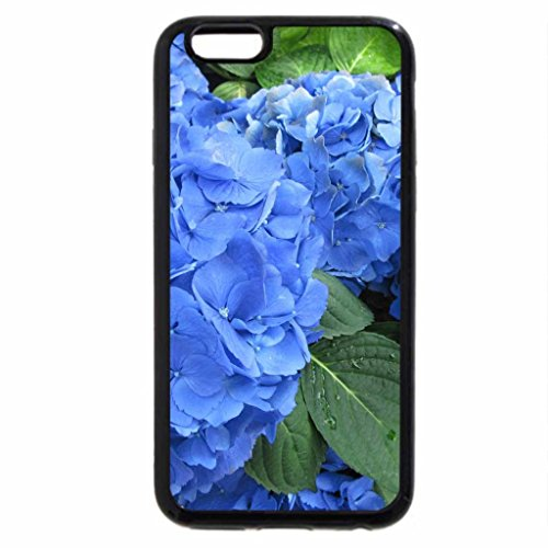iPhone 6S / iPhone 6 Case (Black) The pyramids display gardens 81
