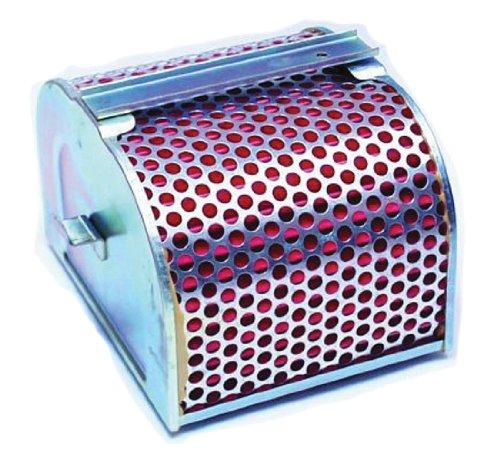 Hiflofiltro HFA1703 Premium OE Replacement Air Filter