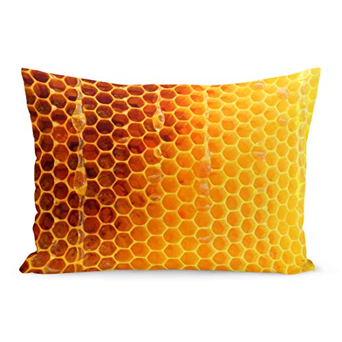 Semtomn Throw Pillow Covers Hexagon Wax Honeycomb from Bee Hive Filled Golden Honey Macro Photography Consisting of Beeswax Yellow Pillow Case Lumbar Pillowcase for Couch Sofa 20 x 30 inchs