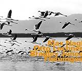 Flamingos By Max Nagl (2004-07-12)