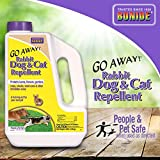 Dog Repellants - Best Reviews Guide