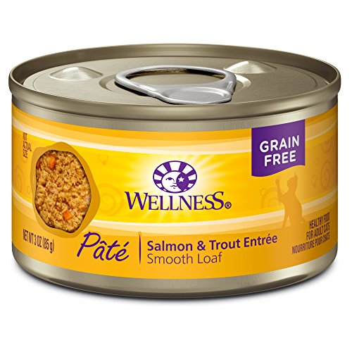 Wellness Natural Grain Free Wet Canned Cat Food, Salmon & Trout, 3-Ounce Can (Pack of (Wellness Adult Salmon)