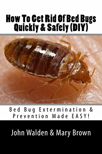How To Get Rid Of Bed Bugs Quickly Safely Diy Bed Bug