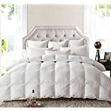 LUXURIOUS 1500 Thread Count Queen Size 1500TC Goose Down Comforter 750FP, 50oz, White Color, 100% Egyptian Cotton 1500 TC