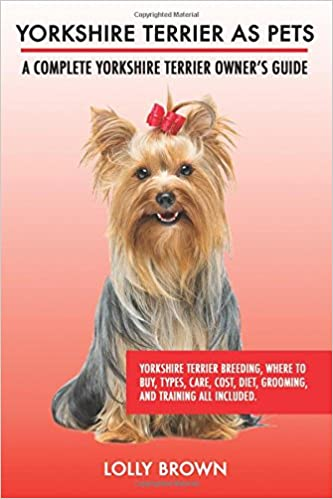 Buy Yorkshire Terrier As Pets Yorkshire Terrier Breeding Where To