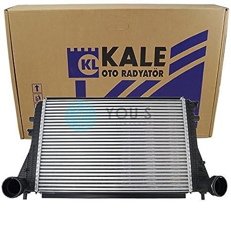 Col Rizada Intercooler Turbo Refrigerador Netzmaße: 610X 410X 35Mm - 1K0145803A: Amazon.es: Coche y moto