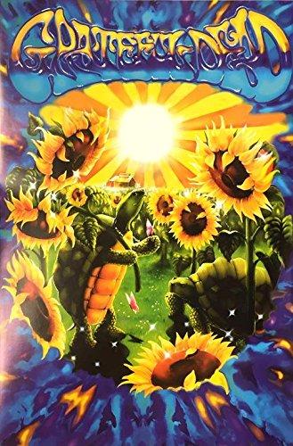 Grateful Dead - Posters - Domestic