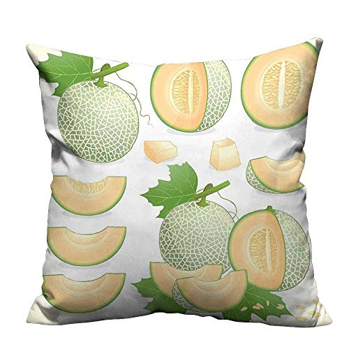 YouXianHome Zippered Pillow Covers Various Melon Fruit with Leaf Yummy Food Fresh Diet Illustration Avocado Green Light Decorative Couch(Double-Sided Printing) 16x16 inch