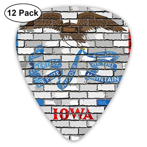 - Iowa Flag Gay Pride Lgbt Art Wall Small Medium Large 0.46 0.73 0.96mm Mini Flex Assortment Plastic Top Classic Rock Electric Acoustic Guitar Pick Accessories Variety Pack