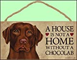 1 X A house is not a home without Chocolate Labrador Retriever - 5