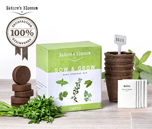 Natures's Blossom Sow and Grow 5 Herbs kit