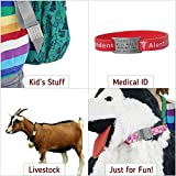 Leashboss Pet ID Tags for Dog and Cat Collars