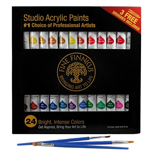 Acrylic Paint Set for Artists with 24 Large color tubes and 3 free brushes. This set is the perfect artist's tool for students, hobbyist, and great for (Iii Stretched Canvas)