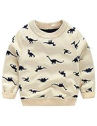 Ameyda Boys' Dinosaurs Crewneck Knit Sweater