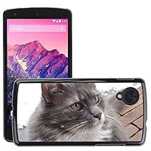 Hot Style Cell Phone PC Hard Case Cover // M00109055 Cat Ears Pet Animals Fur // LG Nexus 5