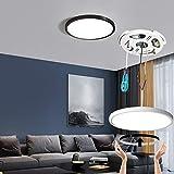 Taloya LED Ceiling Light Office Black,3 Color