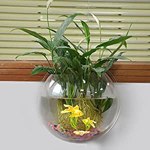 new arrival wall mounted hanging acrylic fish tank aquarium bubble bowl plant pot. Black Bedroom Furniture Sets. Home Design Ideas