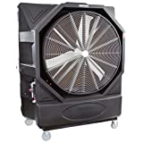 OEMTOOLS 23971 Variable Speed Evaporative Cooler, Black