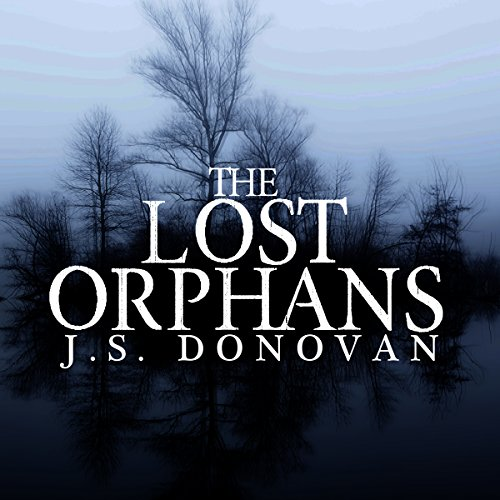 The Lost Orphans: A Riveting Mystery, Book 1