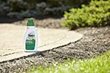 Roundup for Lawns 5 Concentrate (Southern), 32