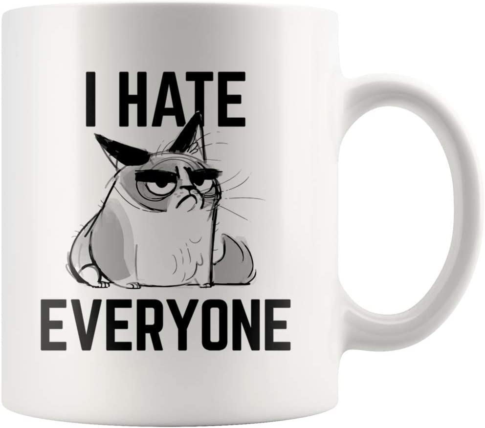 ArtsyMod I HATE EVERYONE Angry Cat, Perfect Funny Saying Gift For Cats Lover, Man Woman Lady Feline Owner, Gifts For Grumpy Friends, Family, Coworkers! Durable Ceramic White Coffee Mug (11oz.)