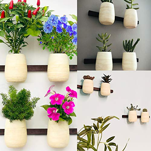 Boho Modern Mini Wall Pots. Small Interchangable Mounted Planter Vases for Flowers and Succulents. Set of 4.