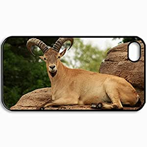 Personalized Protective Hardshell Back Hardcover For iPhone 4/4S, Goat Design In Black Case Color