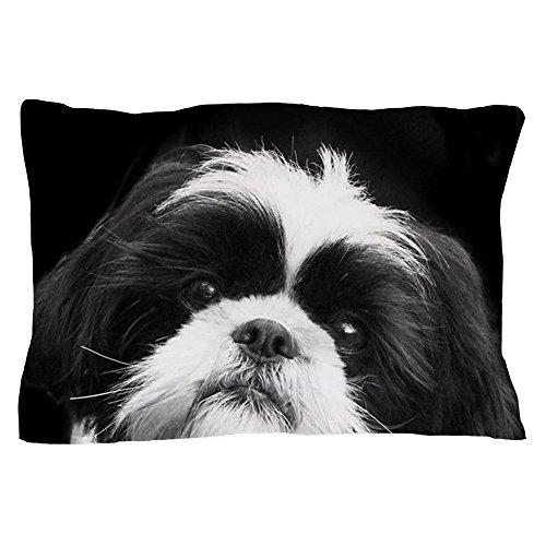 (CafePress Shih Tzu Dog Standard Size Pillow Case, 20