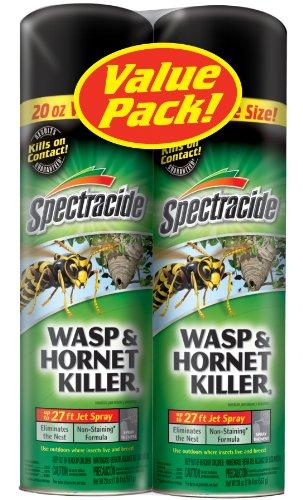 Spectracide Hornet Killer Aerosol 20 oz product image