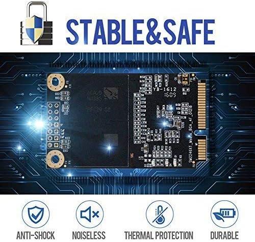 Dogfish SSD Msata 256GB Internal Solid State Drive PC Mini Sata ...