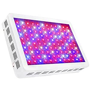 SYGAVLED Luz de cultivo LED 600W - Alto rendimiento - Lámpara de panel para cultivo interior hidropónico de plantas y verduras, espectro completo