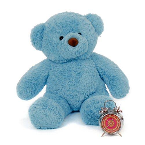 Blue Bear Stuffed Animal - Giant Teddy 2.5 Foot Teddy Bear Stuffed Animal Toy Huggable Cute Chubs Bear (Sky Blue)
