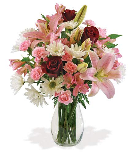 Deepest Condolences Red Roses, Pink Lilies, Pink Alstroemeria Sympathy Bouquet, with Glass Vase (Fresh Cut ()
