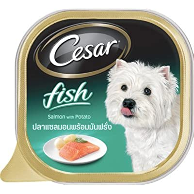 Cesar Dog Food Salmon&Potato