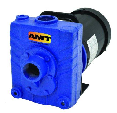 AMT Pump 2822-95 Self-Priming Centrifugal Pump, Cast Iron, 1-1/2 HP, 3 Phase, 230/460V, Curve C, 1-1/2