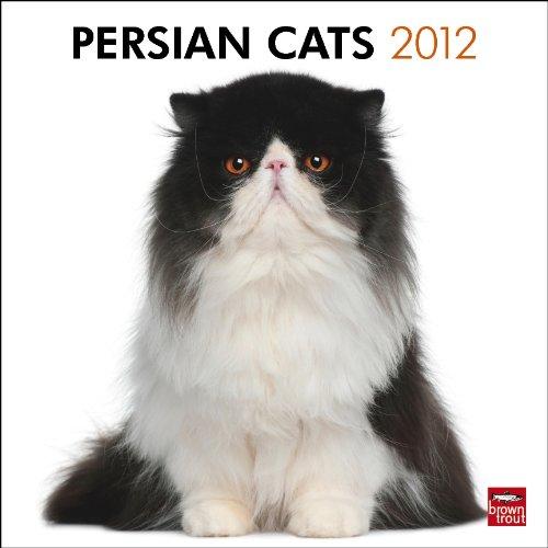 Persian Cats 2012 Square 12X12 Wall Calendar (Multilingual Edition) PDF ePub fb2 ebook