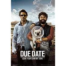 (24x36) Due Date Movie Robert Downey Jr Zack Galifianakis Poster Print