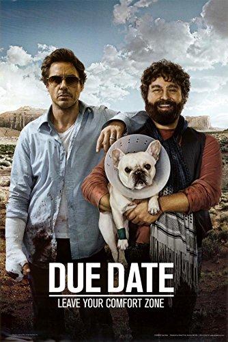 Due Date Movie Robert Downey Jr Zack Galifianakis Poster Pr