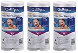 Culligan P5 Whole House Premium Water Filter, 8,000