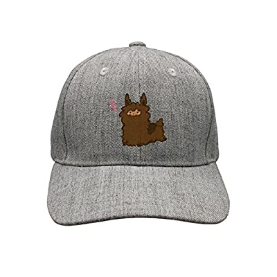 lsawdas Cute Llama Woolen Peak Cap Snapback Hat Sports Caps