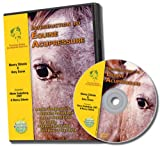 Introduction to Equine Acupressure - DVD