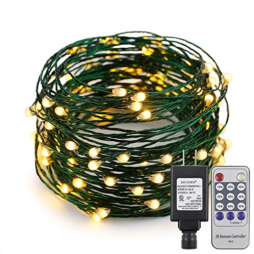 (ER CHEN(TM 33ft Led String Lights,100 Led Starry Lights on 10M Green Copper Wire String Lights Power Adapter + Remote Control(Warm White))
