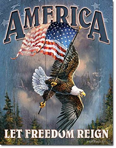 (America Let Freedom Reign Patriotic Flag Eagle Tin Collectible Sign Gift)