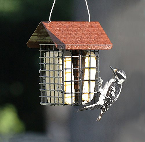 Stokes Select 38070 Capacity Double Bird Feeder with Metal Roof, Two Suet Capaci, 1-Pack, Black